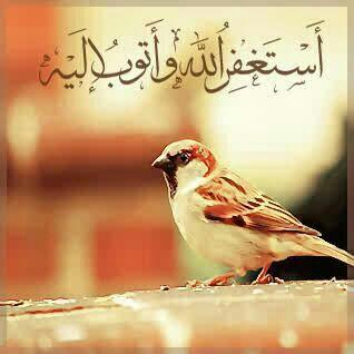 په قرآن کې د ګناه ویې - کلمې