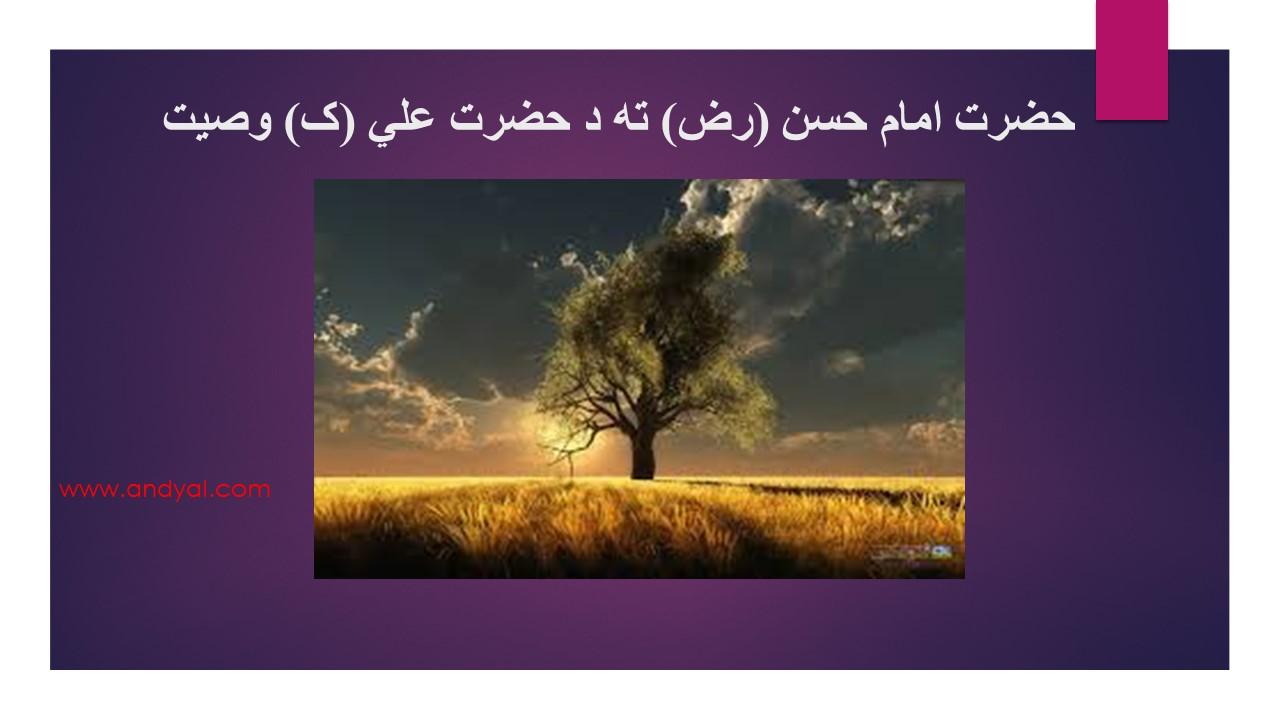امام حسن (رض) ته د حضرت علي (ک) وصیت (پرله پسې ۱۳)