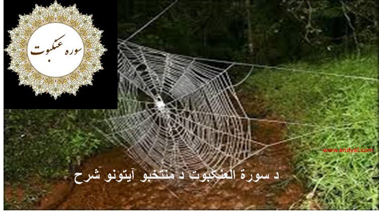 د سورة العنكبوت د منتخبو آیتونو شرح