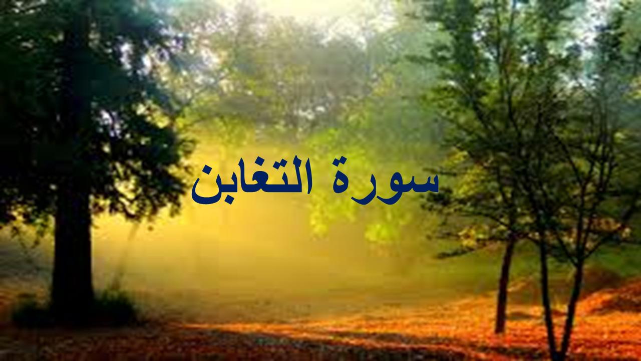 د سورة التغابن د منتخبو آیتونو شرح